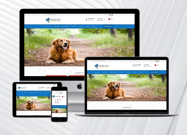 Veteriner / Klinik Web Paketi