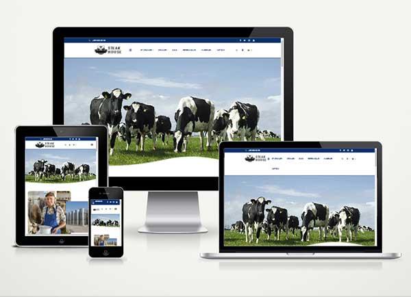 Şarküteri ve Süt Ürünleri E-Ticaret Paketi Mi